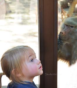 Girl & Baboon 051912PHX 7973