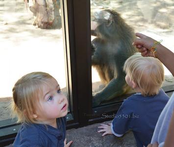 girl, Michael & baboon 051912PHX 7975