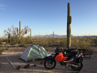 Camping in Organ Pipe Cactus National Monument!  There were very few other campers... nice and quiet!