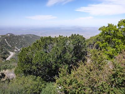 Looking west from Kitt Peak.