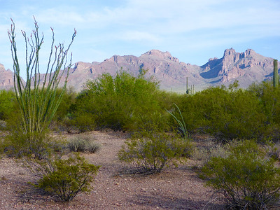 A view from the campgrounds.