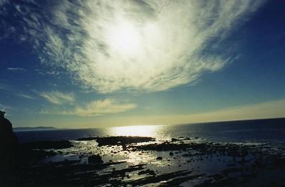 11/17/02 Abalone Cove Shoreline Park & Ecological Preserve. Portuguese Point, Rancho Palos Verdes, Los Angeles County, CA