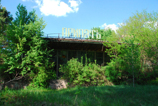 The first sight of the cafe..sadly overgrown