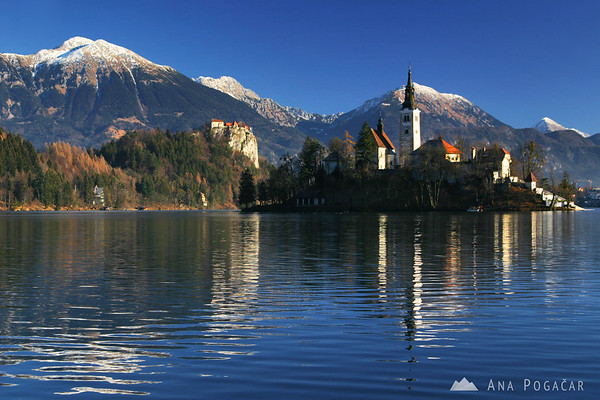 ...and probably deservedly so. Lake Bled, the island with a chapel and a castle on a cliff.