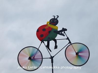 Bug on the bike II