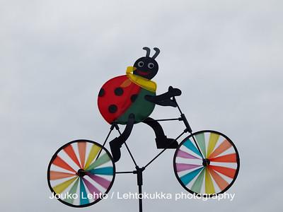Bug on the bike I