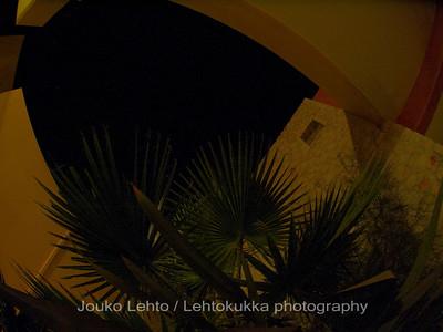 Hotel Theo by night I