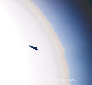 Ikaros #1 The Deep Sky