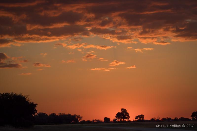 Sunrise Botswana 1200-9130