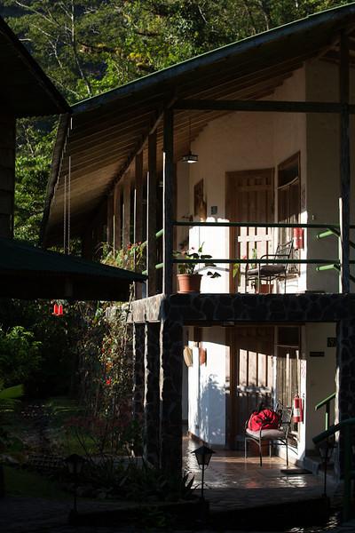 Bosque-de-Paz-3387