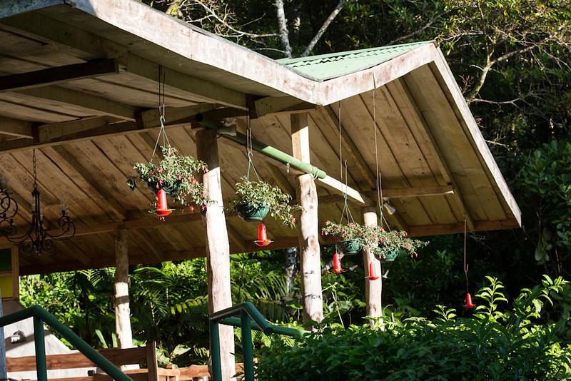 Bosque-de-Paz-pavilion-3397