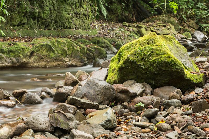 Bosque-de-Paz-Water-0071