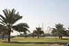 Drive-By Abu Dhabi Mosque