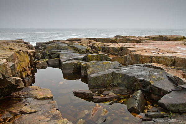 on the Schoodic Peninsula