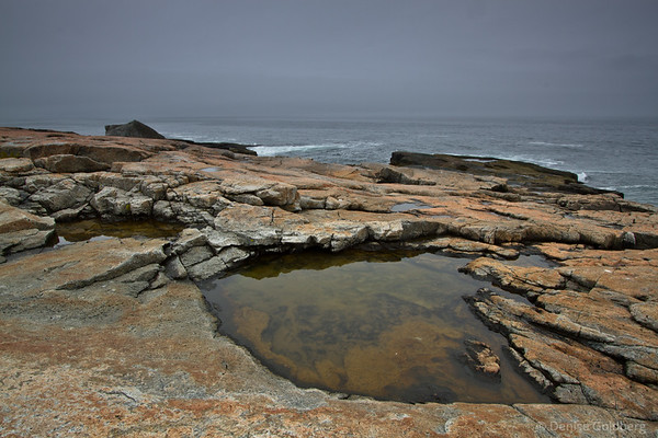 Pools of water, rocks, ocean, at the tip of the Schoodic Peninsula, Acadia National Park, Maine