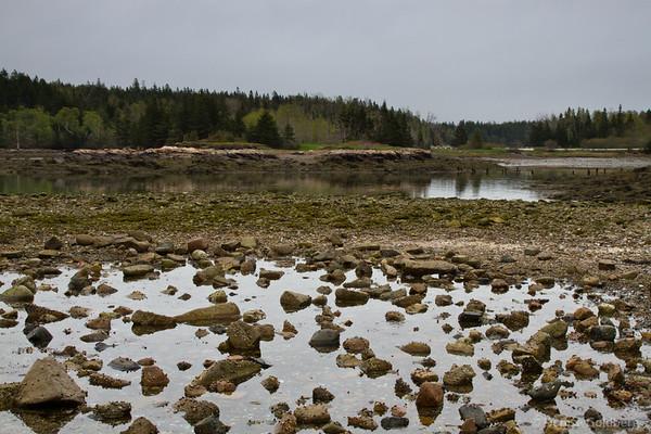 schoodic peninsula, acadia national park, reflections
