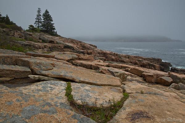 around and around, Acadia