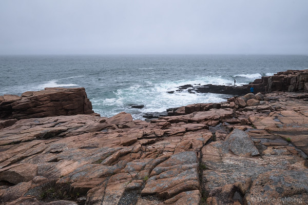 on the rocks, Acadia National Park