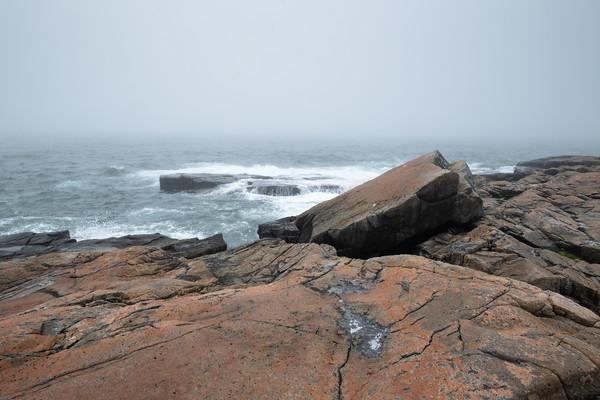 a foggy morning on the Schoodic Peninsula