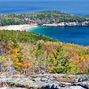 My wife and I climbed Gorham Mountain, an elevation of 525 feet.  We had a great view of Sand Beach.