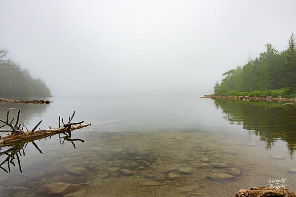 Jordan Pond Fog