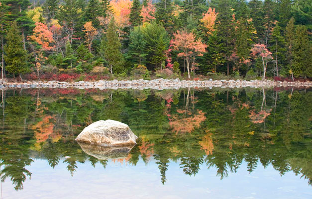 A shoreline view of Jordan Pond
