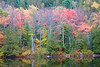 This was taken at Eagle Lake. It represented the pageantry of color displayed in Acadia.