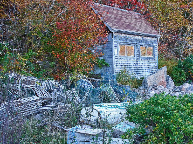 My wife and I found this abandoned fisherman's shack at the end of Otter Cove. We had to do some climbing to get down here.