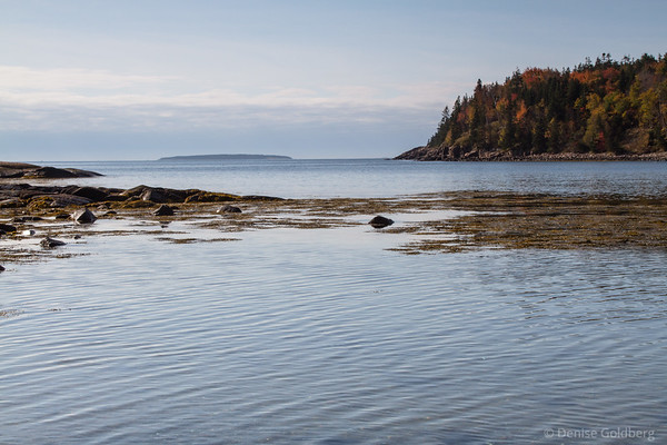 shimmering water, along Park Loop Road, Acadia National Park