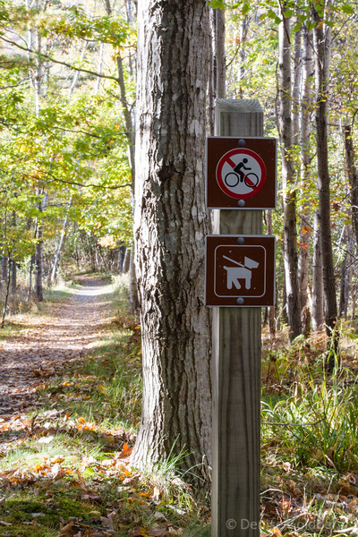 trail signs, Jesup Path