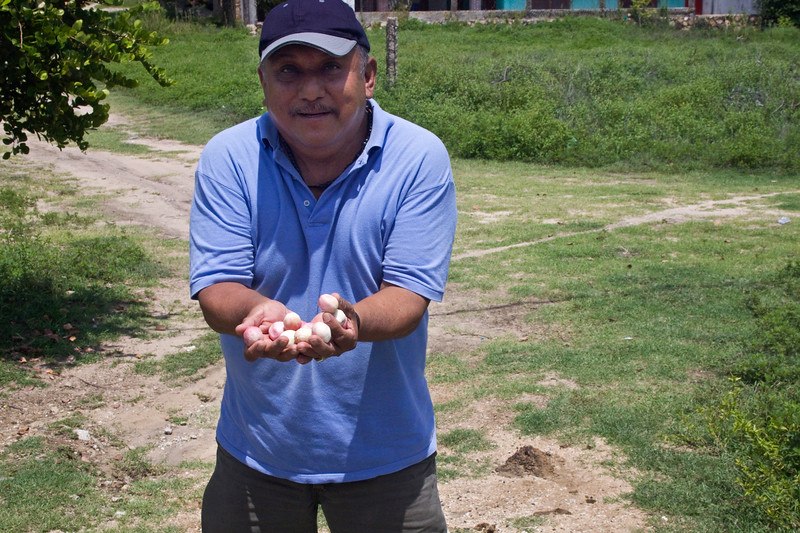 Our guide/driver for the lagoon tour.  He picked these little pink fruits for us to try.