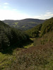 Cwmcarn green vista