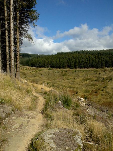 Afan scenery