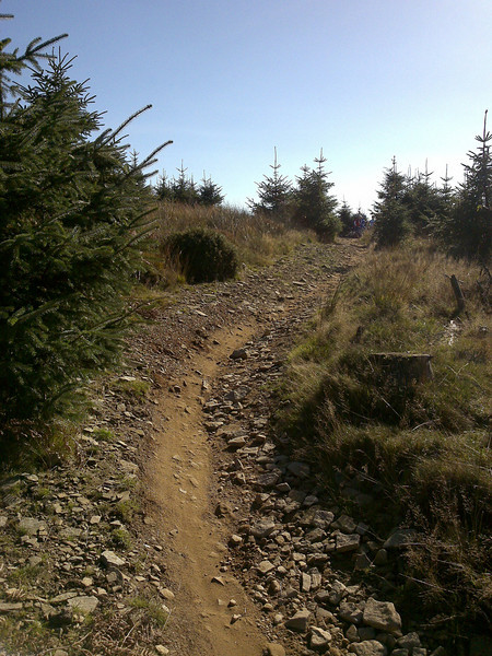 Dusty trail at Cwmcarn