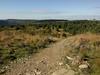 Cwmcarn vista