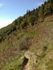 Cwmcarn hillside trail