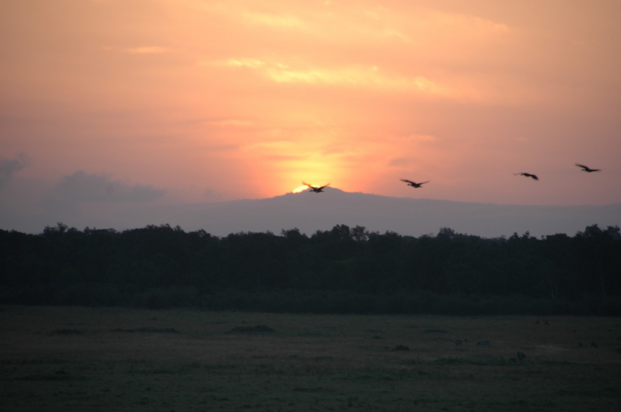 Sunrise on the Mara