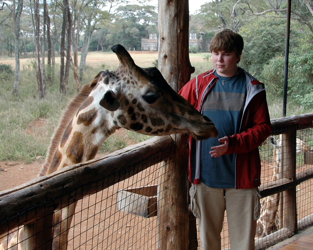 Giraffe Center in Nairobi