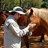 Vinny made friends with one of the lodge's horses.