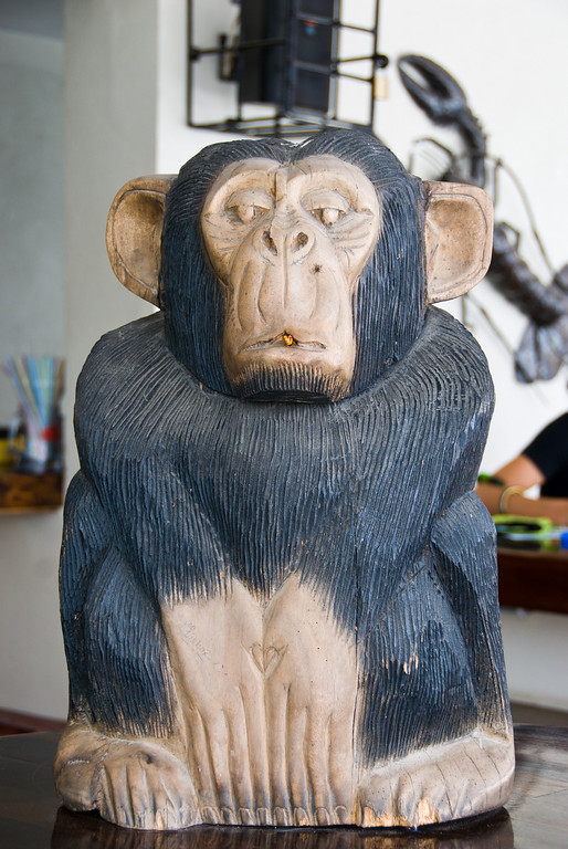 The monkey on the bar