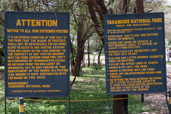 The entrance to our first national park, Tarangire. This 2000 square mile park is very different form the other two we will see. It has water sources year round and some hills, home to the iconic Baobab tree and to one of the largest herds of elephants - thousands of them.