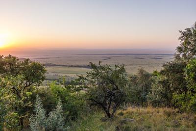 Morning on the Serengeti