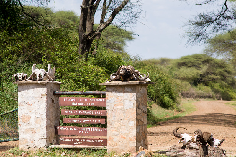Entering the Serengeti