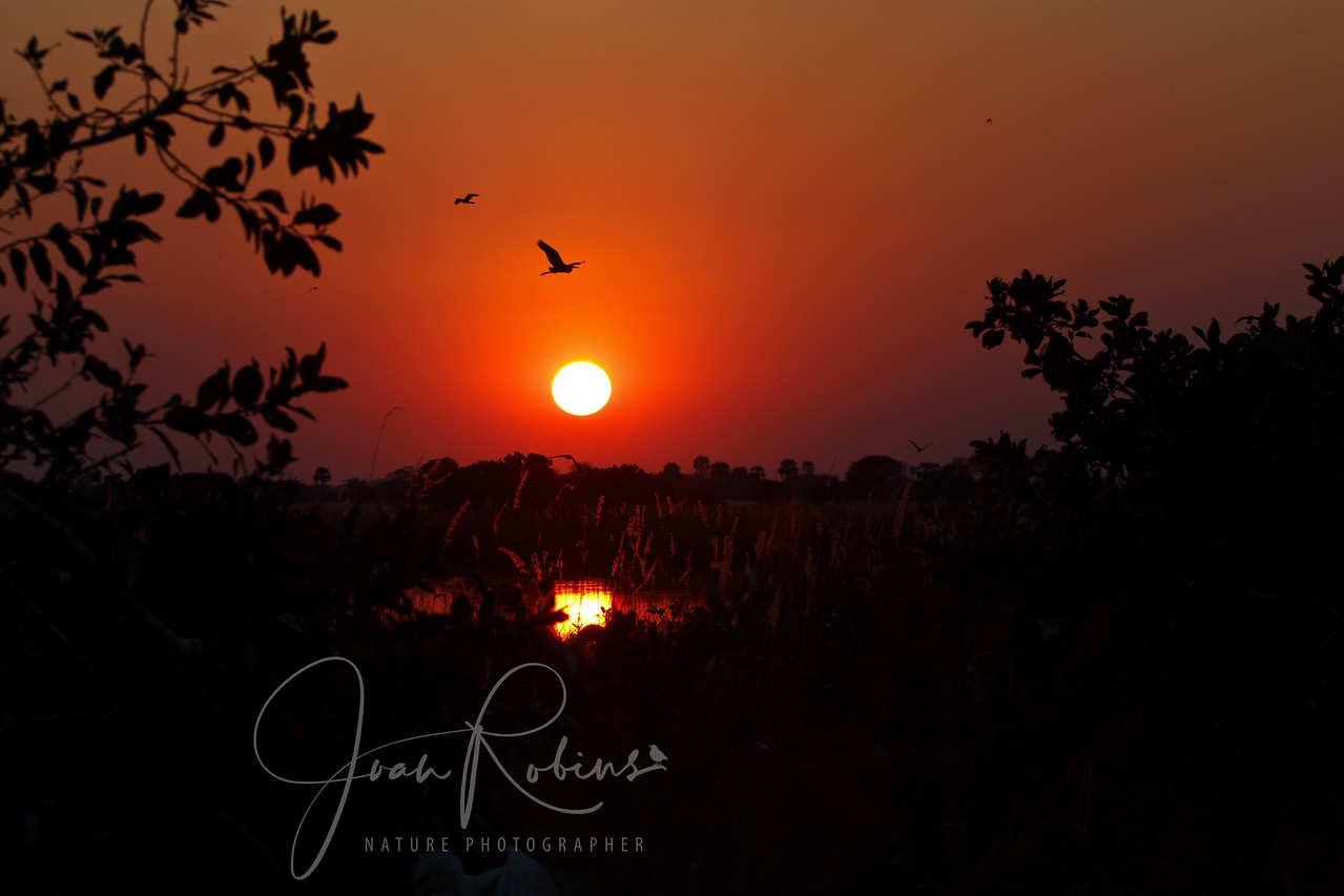 Sunset over the Okavango Delta, Botswana