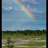 Rainbow, Moremi, Botswana, 2010
