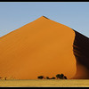 Namibian Dune, 2007