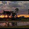 Hippo Pool Sunrise, Moremi, Botswana, 2011