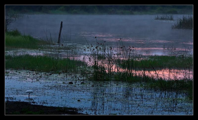 Maun, Botswana, 2011