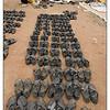Tyre Sandals, Aitong, Kenya, 2009