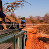 Driving on safari through stunning South African landscape